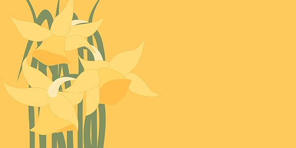 Daffodil Community Workshop